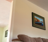 Wall and Trim Painting